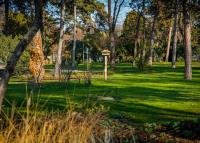 Elkészült a botanikus kert, egy újabb kutyás élménypark és a két kilométeres futókör is a Városligetben